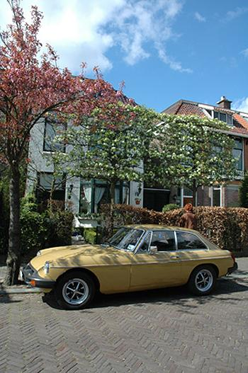 In front of our home, Voorburg The Netherlands