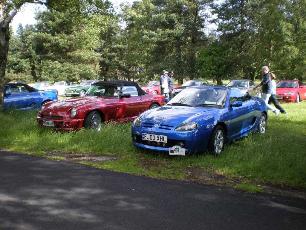 MGs in the trees 2008 cars arriving at Cannock Chase